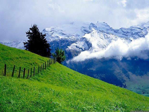 Amazing Nature In Switzerland World Inside Pictures Switzerland Wallpaper Beautiful Landscapes Amazing Nature