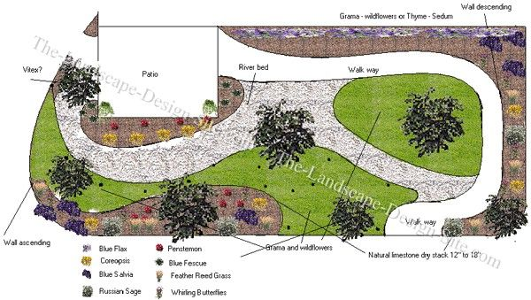 xeriscaping ideas for an enclosed fenced backyard a nice plan for plants and planting ideas in
