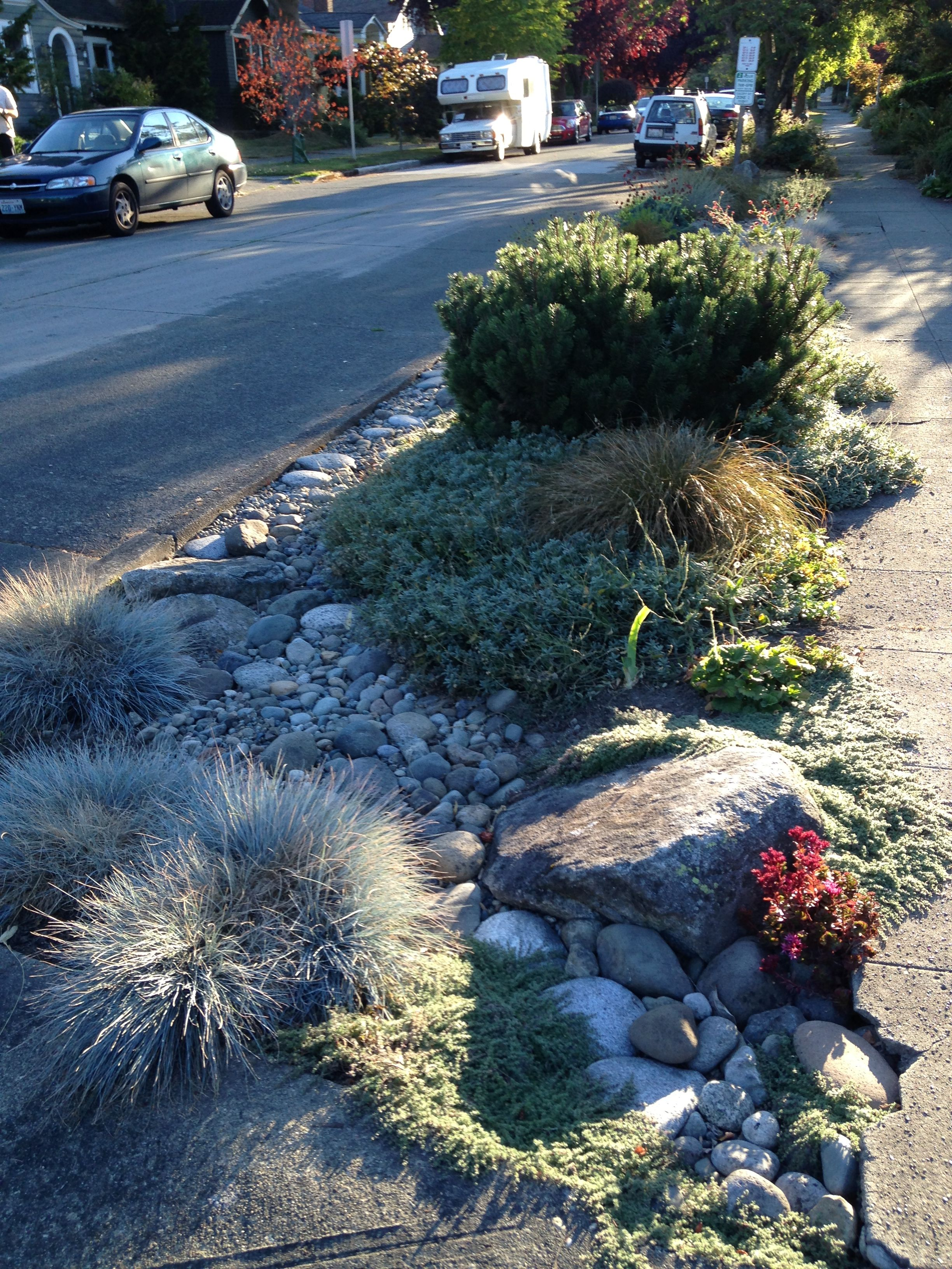 Front garden ideas with parking - Beautiful Rock River For Landscaping The Parking Strip Area In The Front Yard The Is