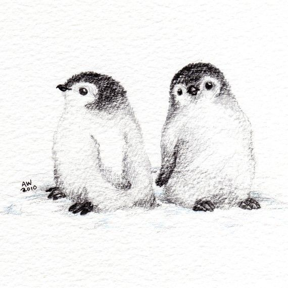artculos similares a 2 little penguin chicks original pencil drawing en etsy
