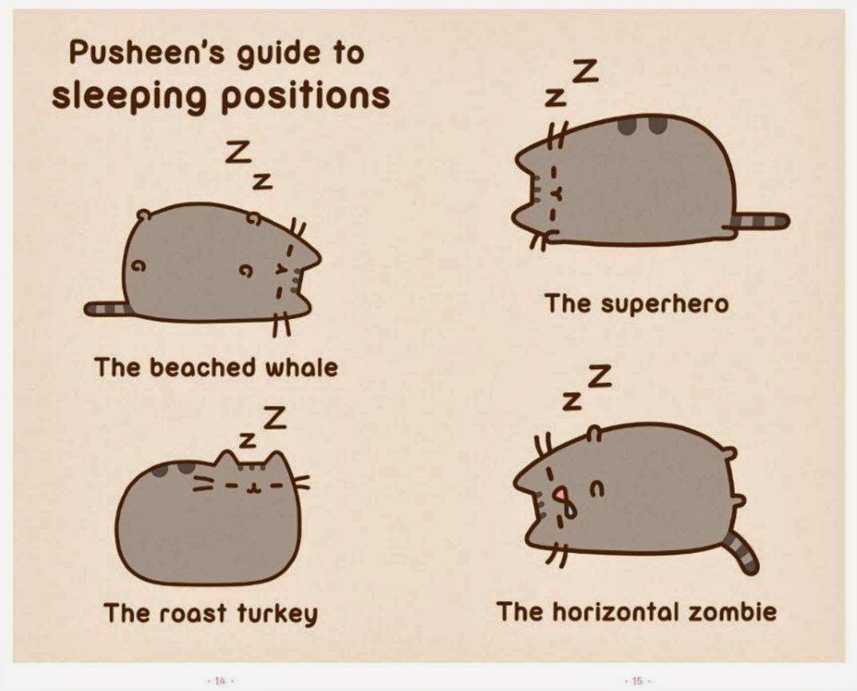 Pusheen's Guide to Sleeping Cat Positions Pusheen the