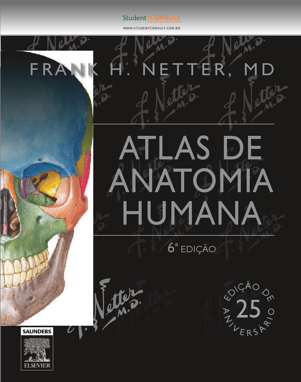 Netter Atlas Anatomia Humana 6ª Edicao Atlas De Anatomia