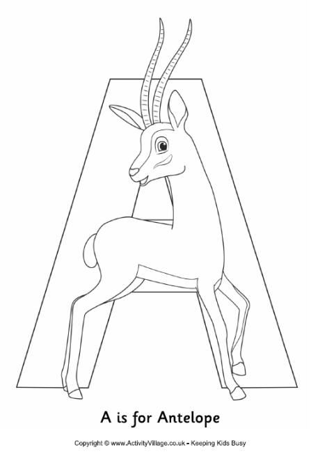 A Is For Antelope Colouring Page Alphabet Coloring Pages