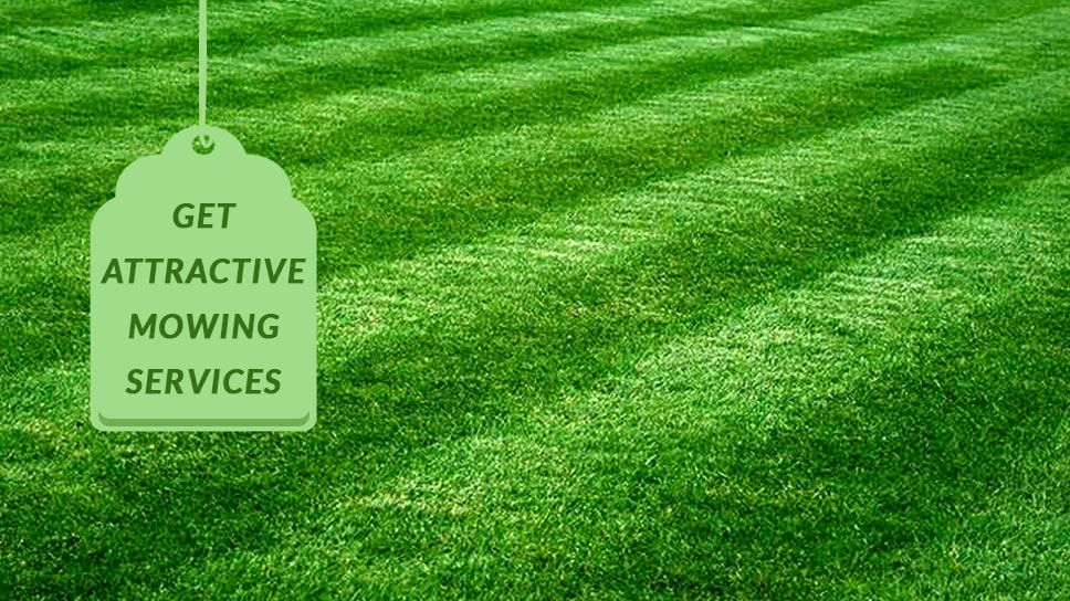 Lawn Mowing Texas Get more attractive mowing services