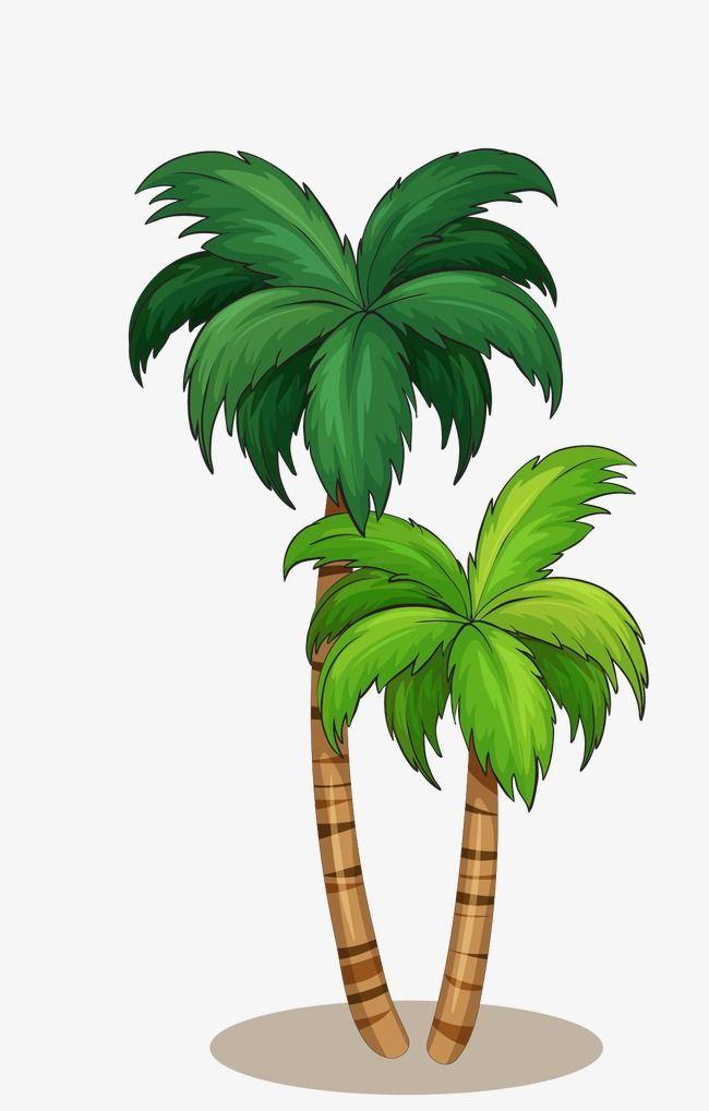 Noix De Coco Vecteur De Noix De Coco Vecteur D Arbre Noix De Coco Png Et Vecteur Pour Telechargement Gratuit Palmier Dessin Plantes Tropicales Fleurs Tropicales