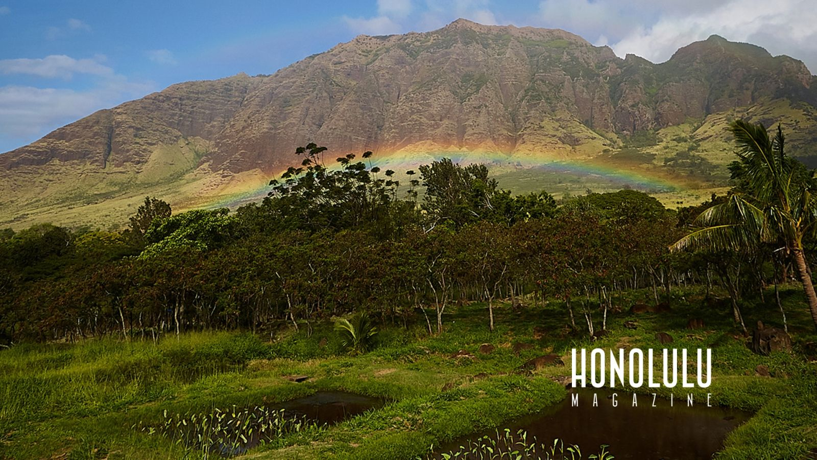 The Best Hawai I Zoom Backgrounds For Your Next Video Calls And Meetings Hawaii Pictures Great Basin National Park Michigan State Parks
