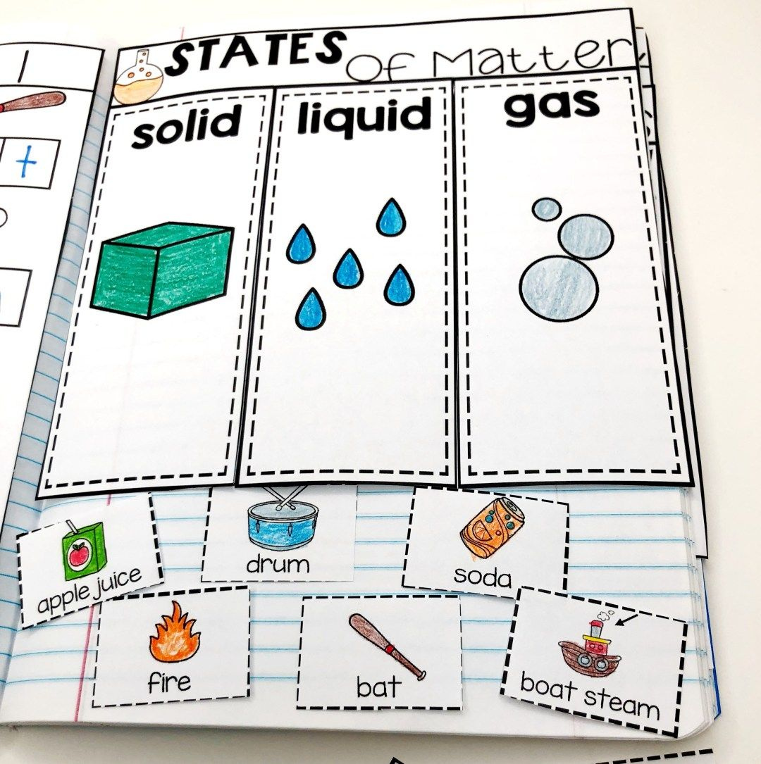 Kindergarten Science Interactive Journals And A Freebie