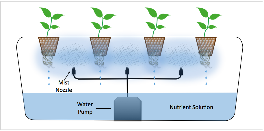 Image result for aeroponics diagram