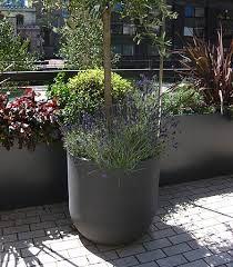 Image Result For Urbis Planters