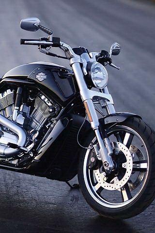 V Rod With Images Harley Davidson Harley Davidson Wallpaper Harley Davidson V Rod