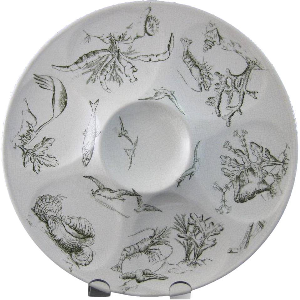 Aesthetic Movement Transferware Oyster Plate - Sea Life 1880s -25% OFF from englishvictorian on Ruby Lane