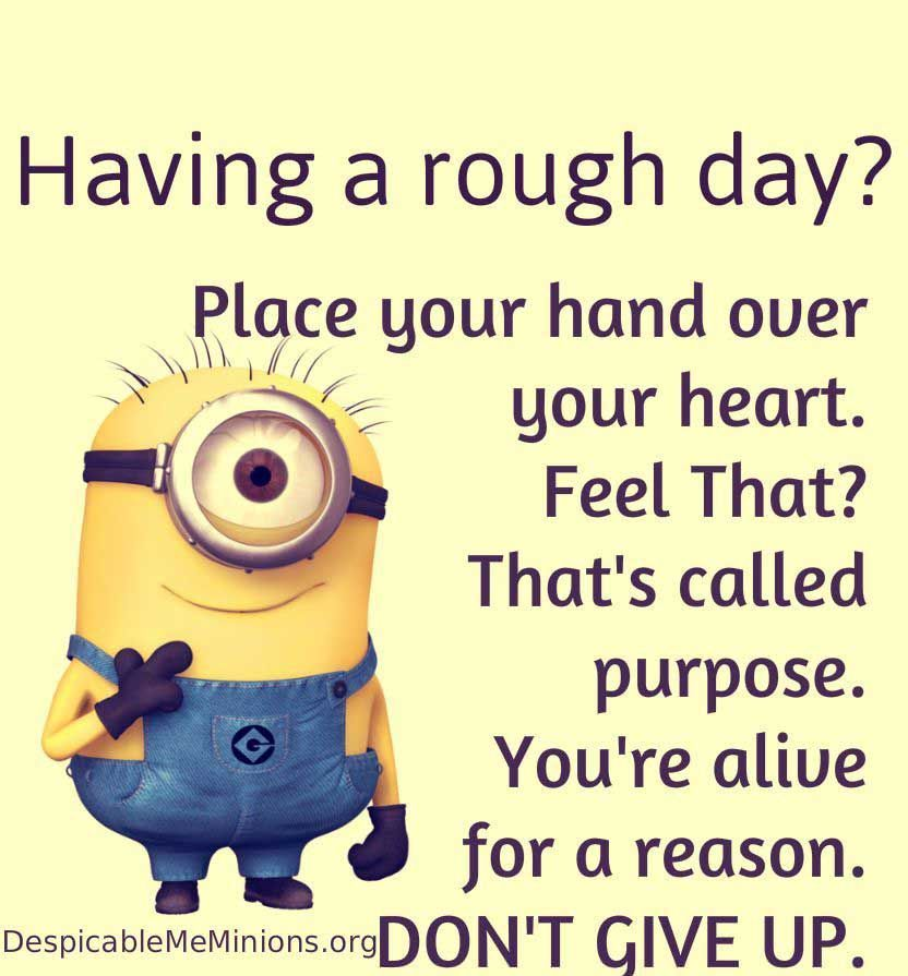 Funniest Minion Quotes and Pictures Of The Week Funny