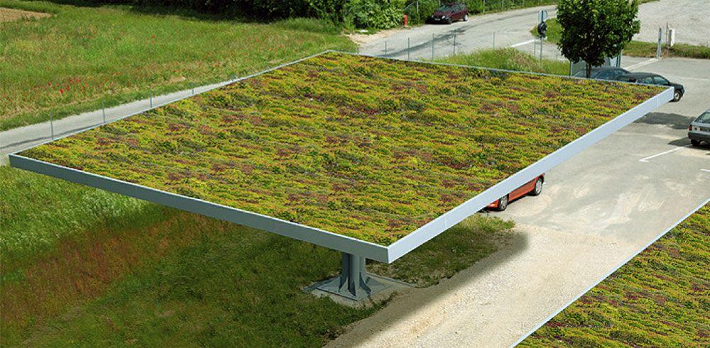 Ombriere Toit Vegetalise Arboris Bonhomme Batiments Industriels Toit Vegetalise Toiture Vegetale Vegetalisation