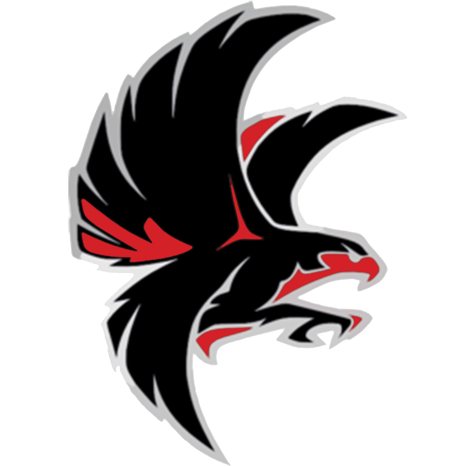Falcon School Mascot Falcon Drawing Animal Logo Art