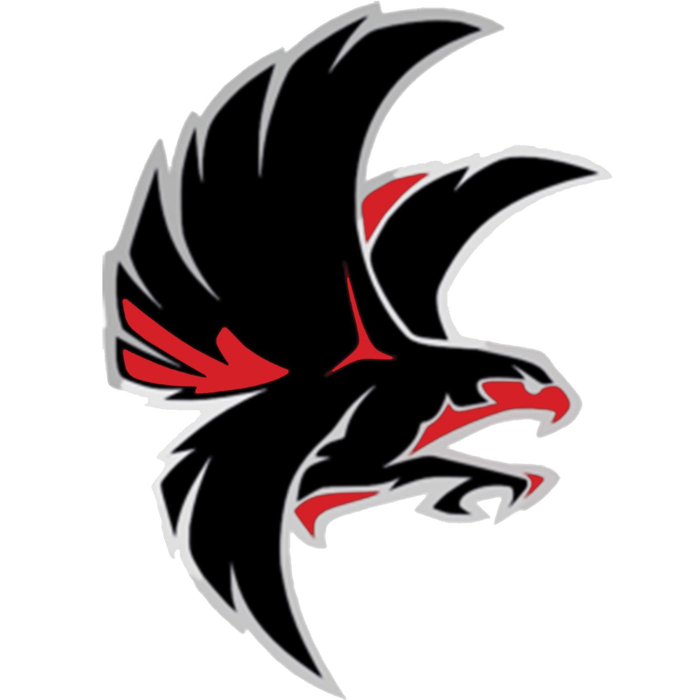 Falcon school mascot Falcon drawing, Logos, Animal logo