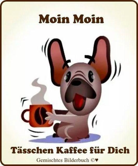 Pin Von Sabine Rau Auf Morgengrüße Guten Morgen Lustig