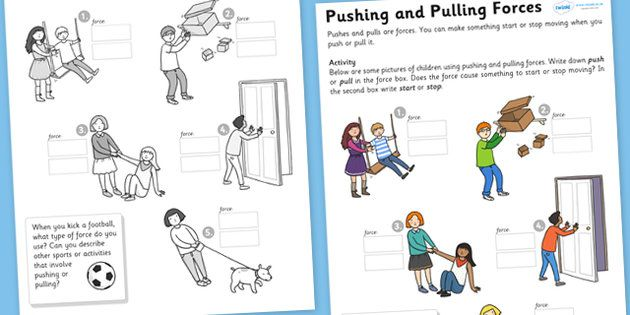 Worksheets For Force And Motion First Grade Google Search