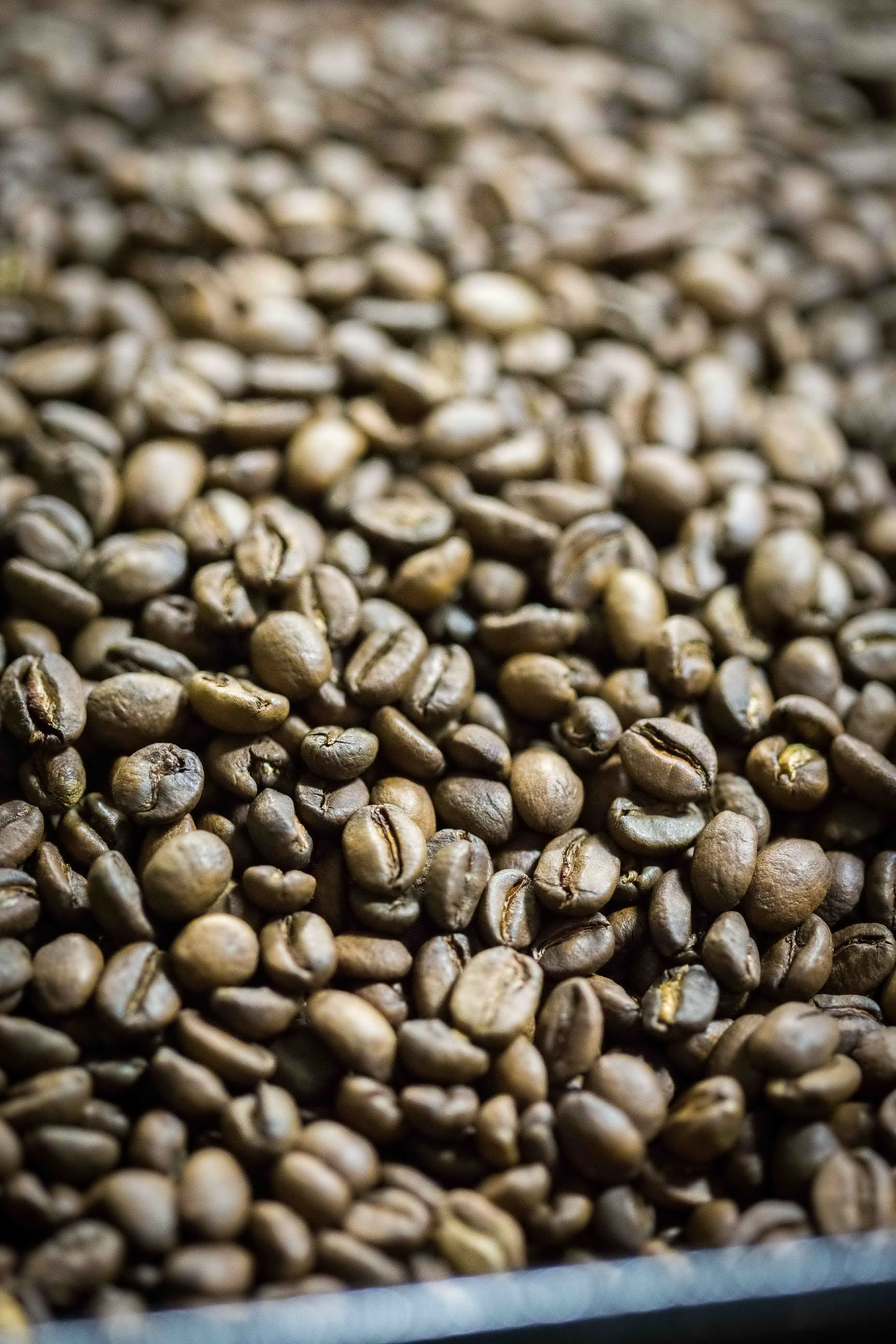 5 Origins Of Good Quality Coffee Beans That Coffee Lovers