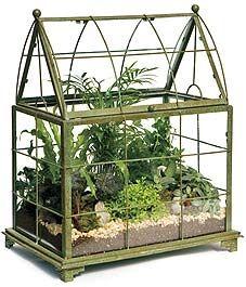 pretty terrarium drkate11