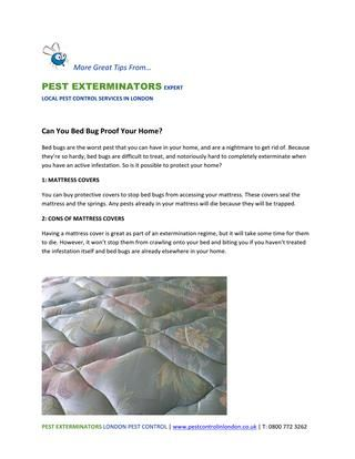 Can You Bed Bug Proof Your Home Can You Bed Bug Proof Your Home