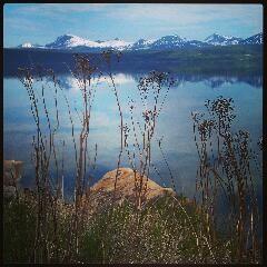 Linda: foto Narvik 2013