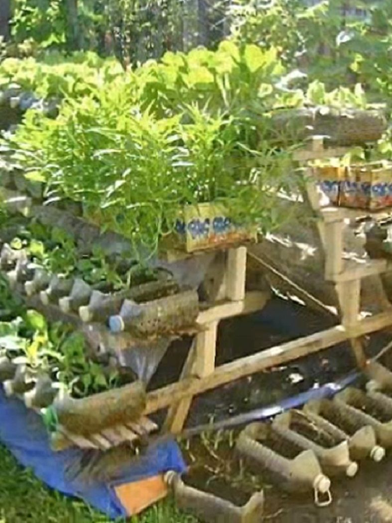 Risers In Container Gardening Video