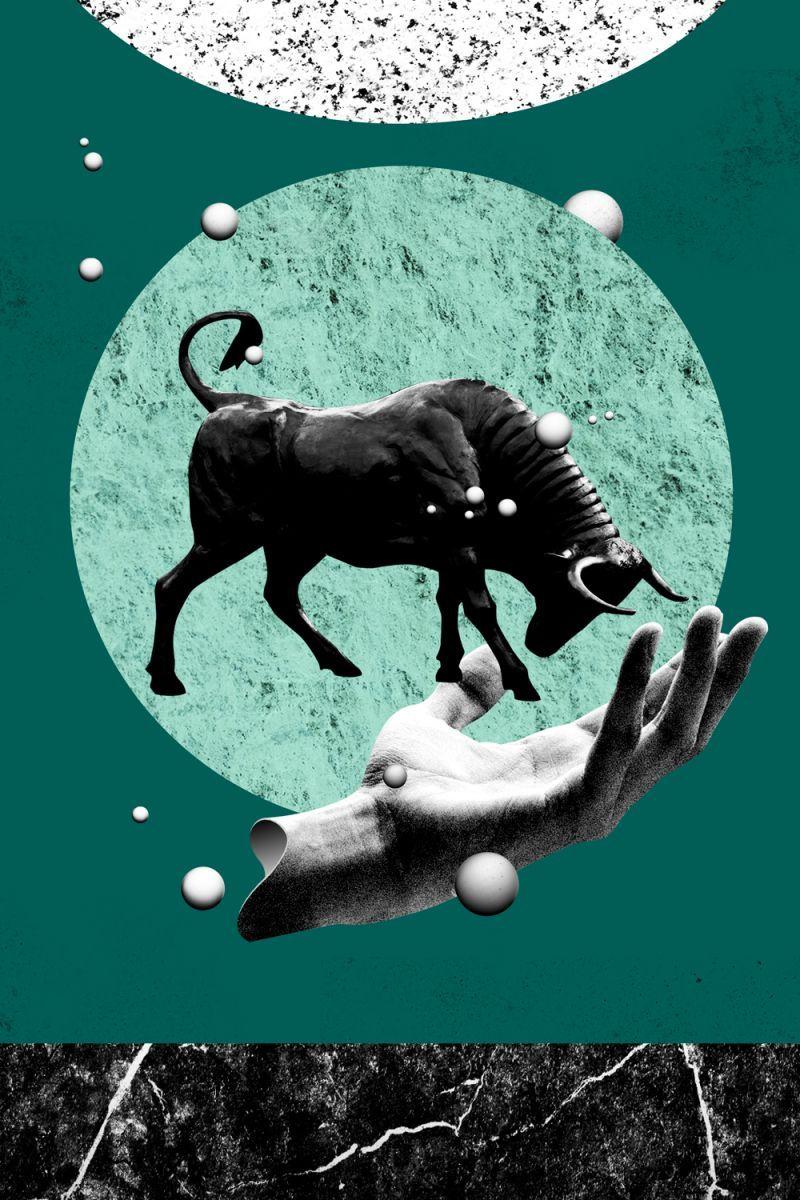 Welche sternzeichen passen zusammen stier
