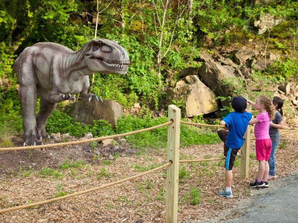 One-Day Dinosaur Park Admission: Field Station: Dinosaurs