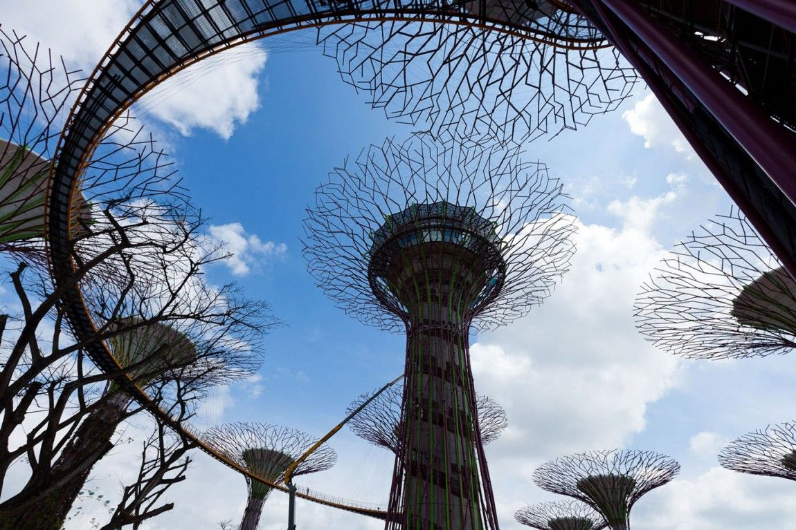 Gardens By The Bay Singapore Magic Trees Singapore