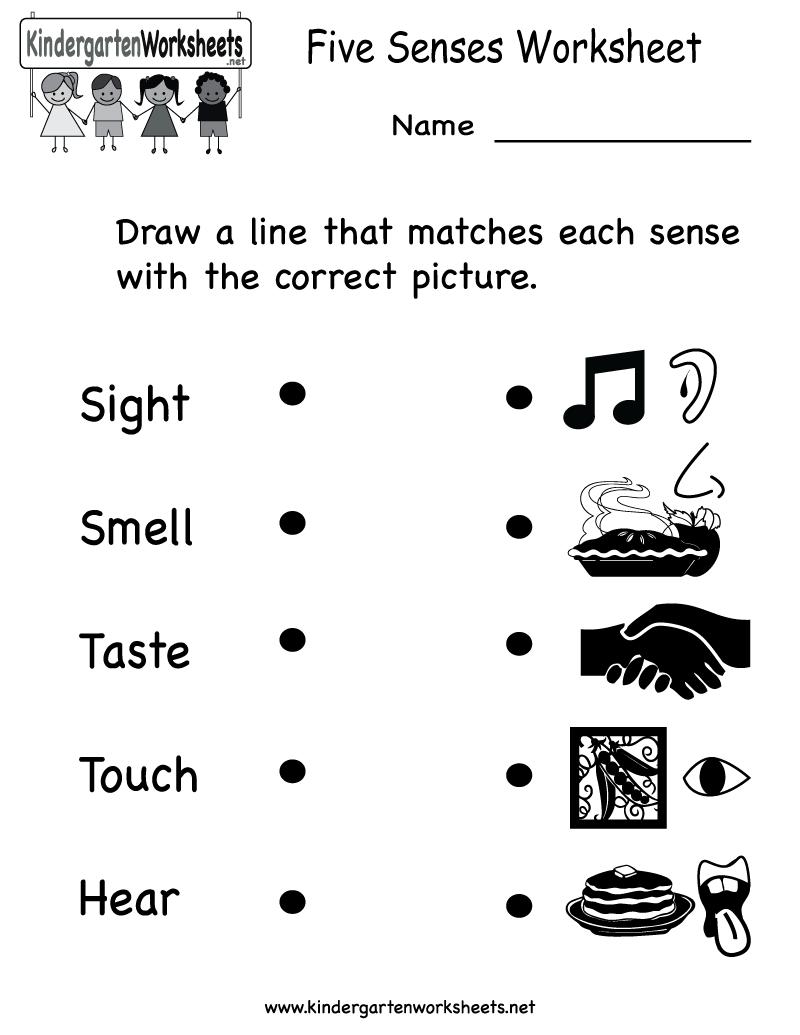 hight resolution of Senses - Lessons - Blendspace