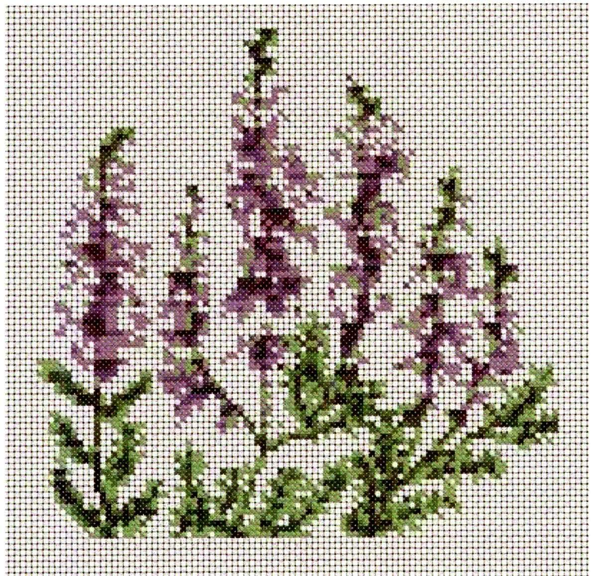Celtic Obsessions Scottish Heather Cross Stitch Pattern Stitch Patterns Cross Stitch Cross Stitch Patterns