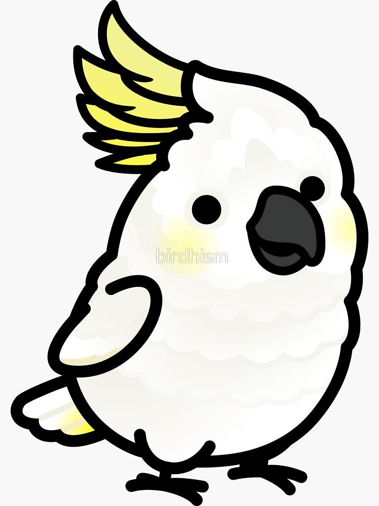 Cockatoo parrot decal in 9 colors