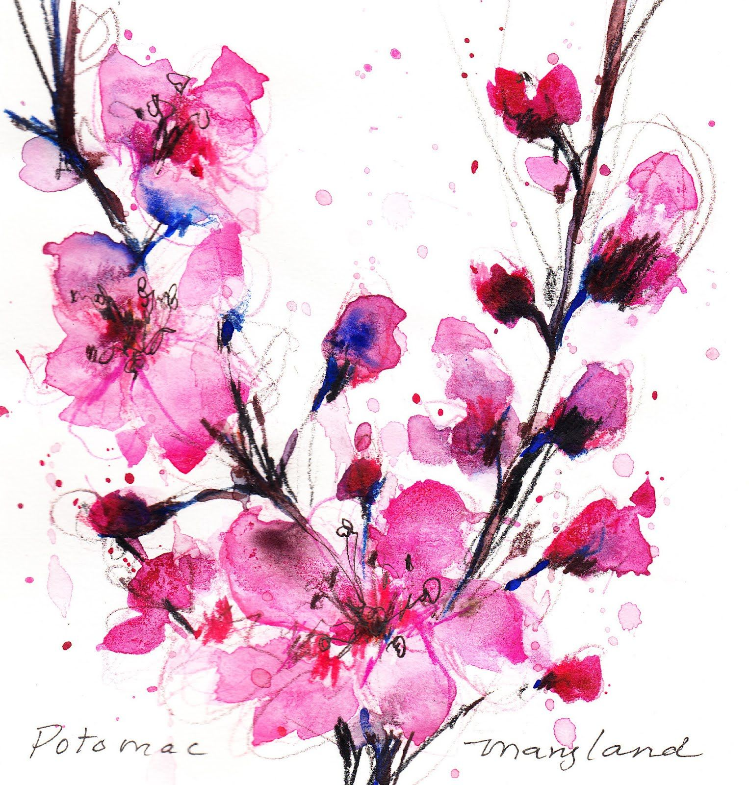 Watercolor Painting Cherry Blossom In Japan - Yahoo Image ...