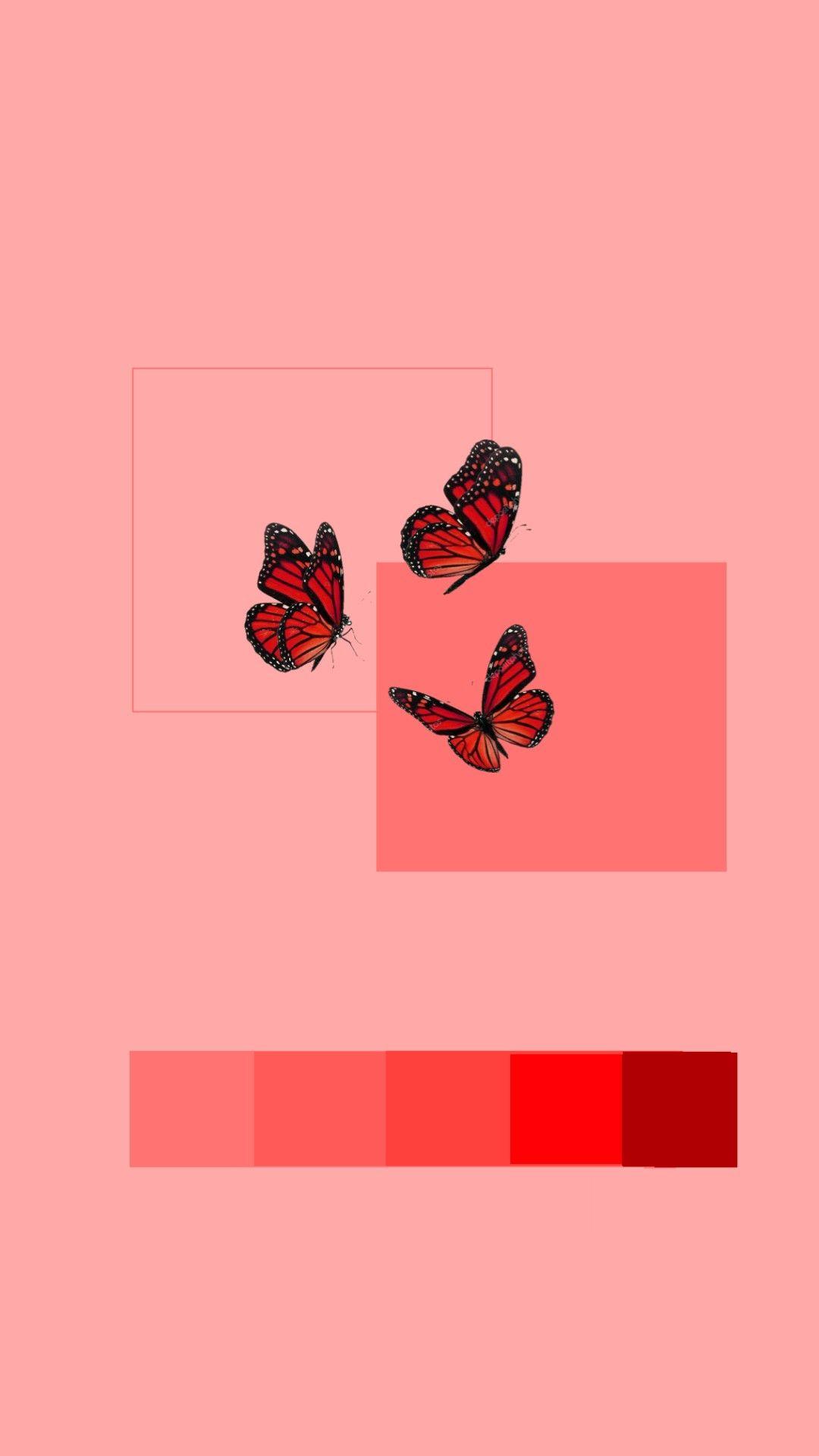 Wallpaper In 2020 Butterfly Wallpaper Iphone Aesthetic Iphone Wallpaper Cute Patterns Wallpaper