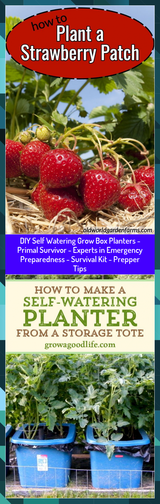 DIY Self Watering Grow Box Planters  Primal Survivor  Experts in Emergency Preparedness  Survival Kit  Prepper Tips