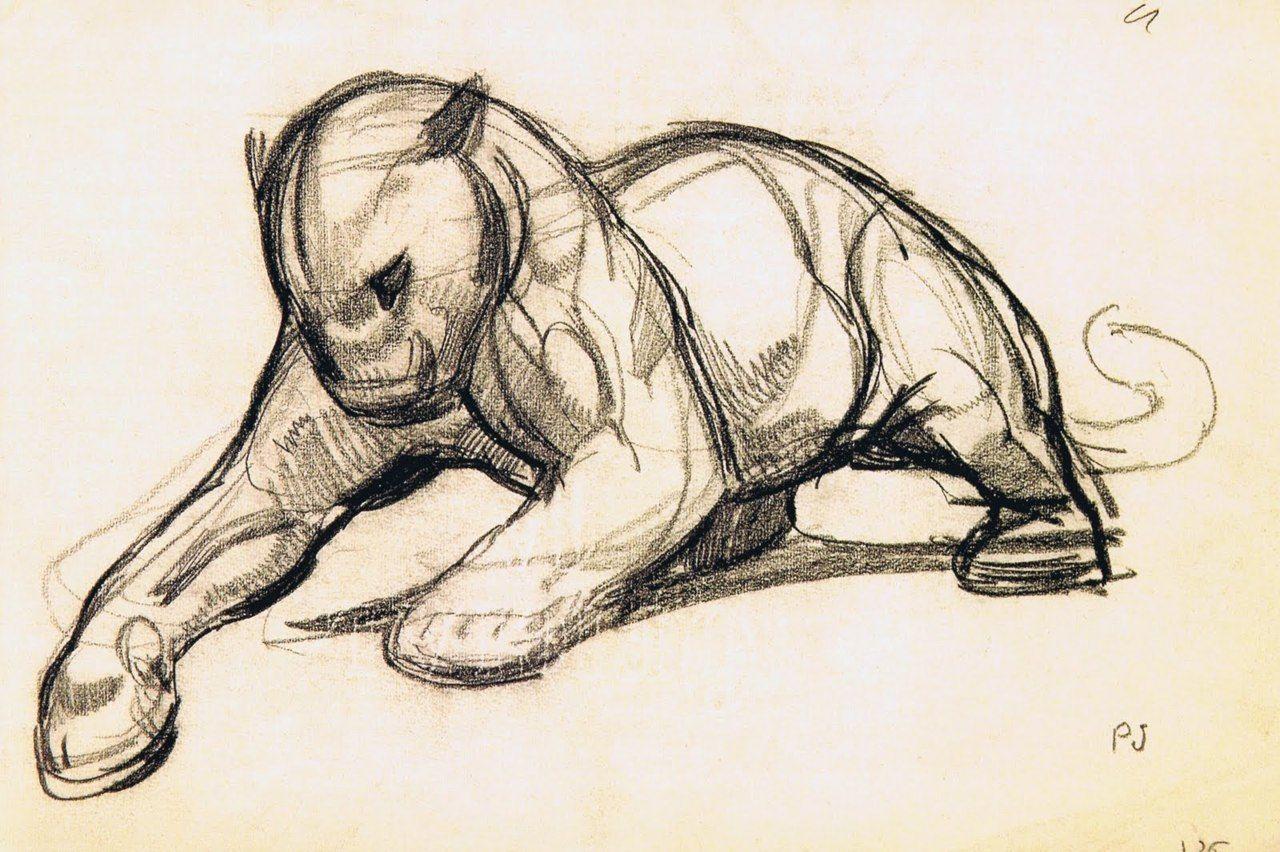 Paul Jouve Tumblr Paul Jouve Pinterest Cat Sketch Animal