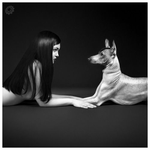 face to face -repinned by Los Angeles County, California portrait studio http://LinneaLenkus.com  #fineartphotography