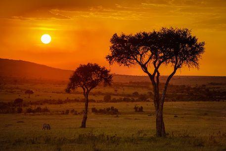 'Sundowner in the Massai Mara' von martin buschmann bei artflakes.com als Poster oder Kunstdruck $20.79
