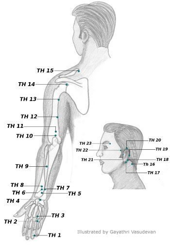 Acupressure Points Chart Acupressure And Reflexology