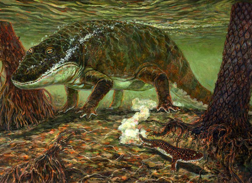 Resultado de imagem para carboniferous amphibians