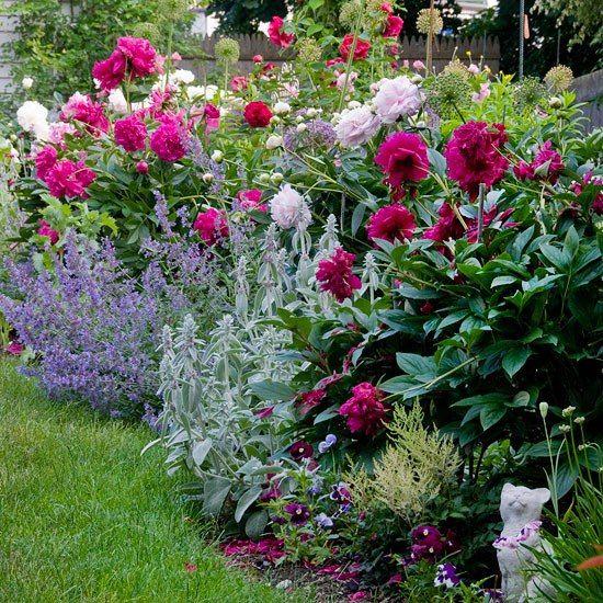 cottage garden with lots of texture and big blooms garden design pinterest garten garten. Black Bedroom Furniture Sets. Home Design Ideas
