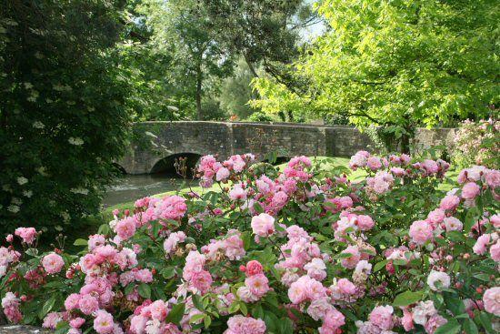 Roses Bibury Wonders Of The World England Scenery