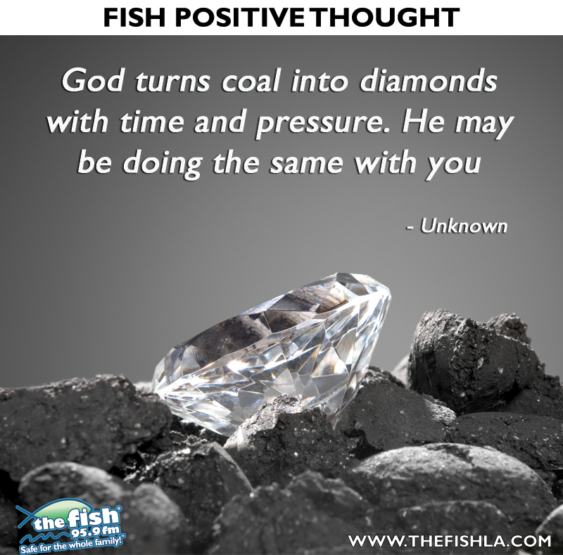 Pin By Janae Burger On Fish Food For Thought Diamond Quotes Rough Diamond Daily Inspiration Quotes