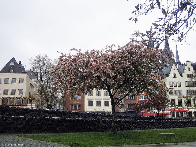 Köln Altstadt by gastronomie-im-netz, via Flickr