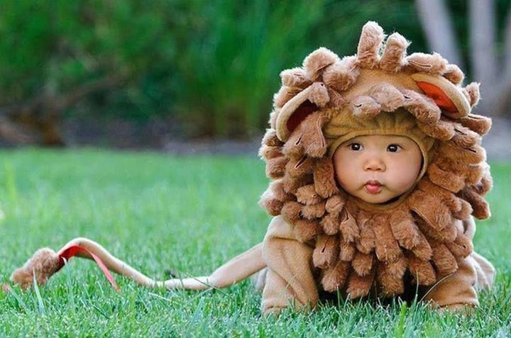 little lion, so cute!