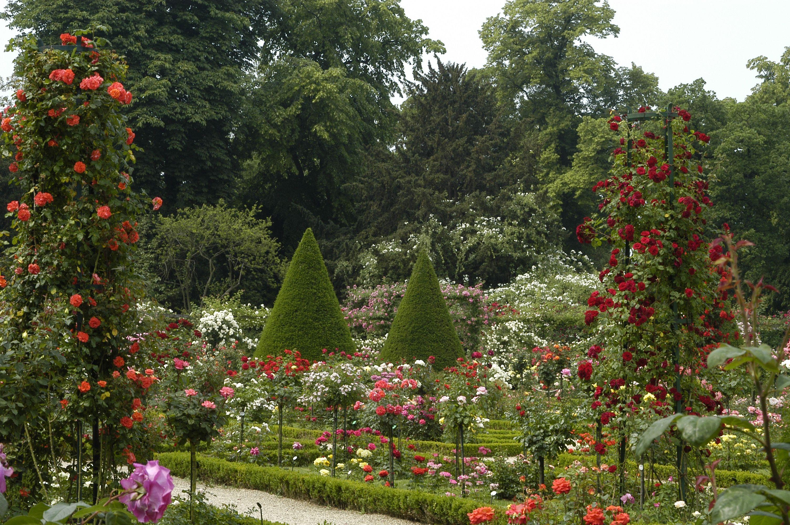 Jardin De Bagatelle Garden Inspiration Garden Plants