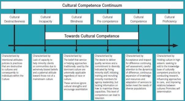 Figure 4 1 Cultural Competence Continuum Felicity's Notes: I