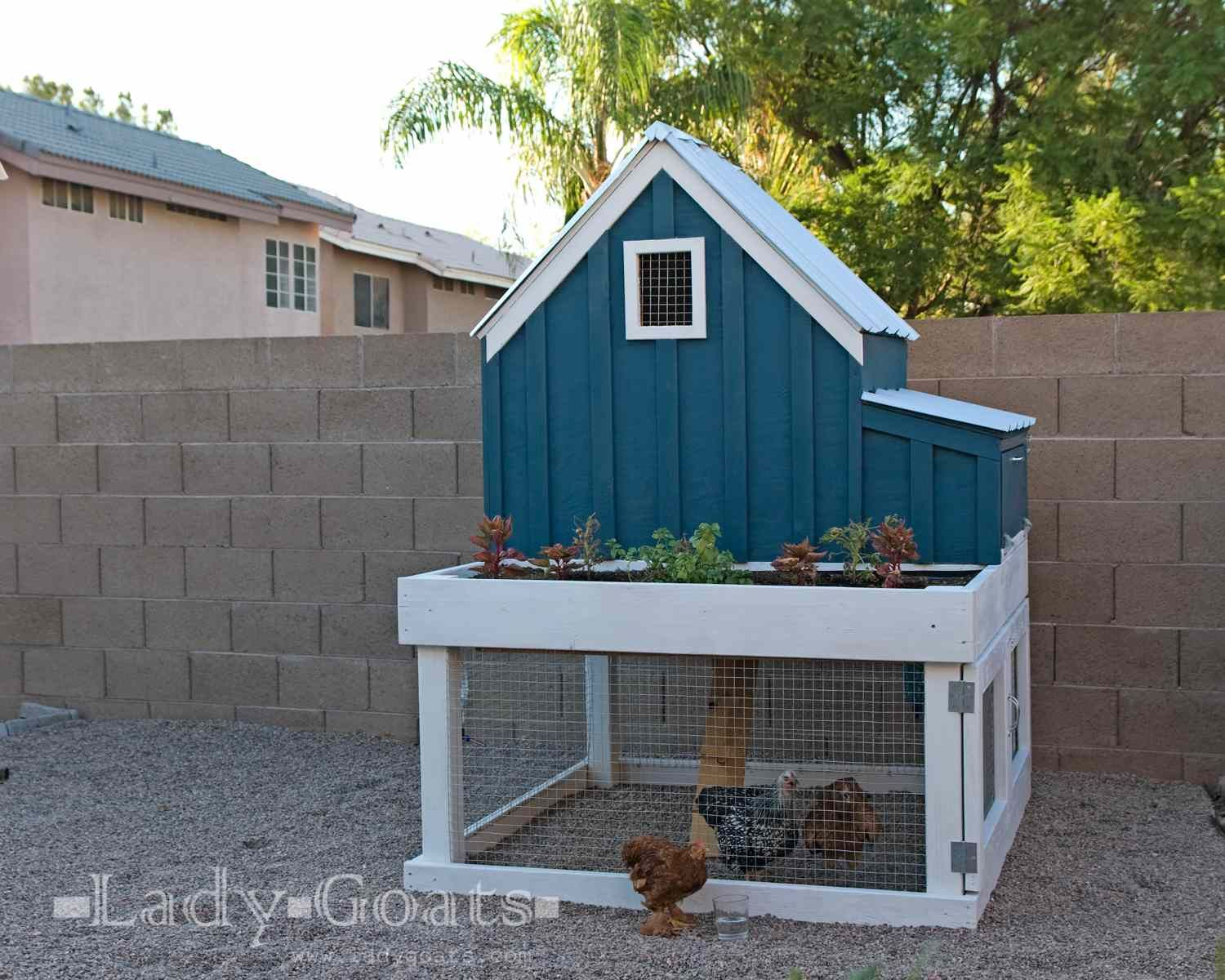Free Chicken Coop Plans Google Search Small Chicken Coops Portable Chicken Coop Diy Chicken Coop Plans Backyard chicken coop diy plans