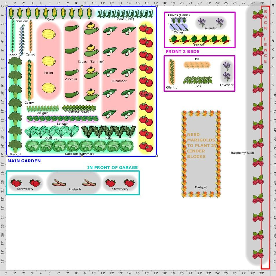 The evolution of Vegetable Garden Layout with 26 Photos | Pinterest ...