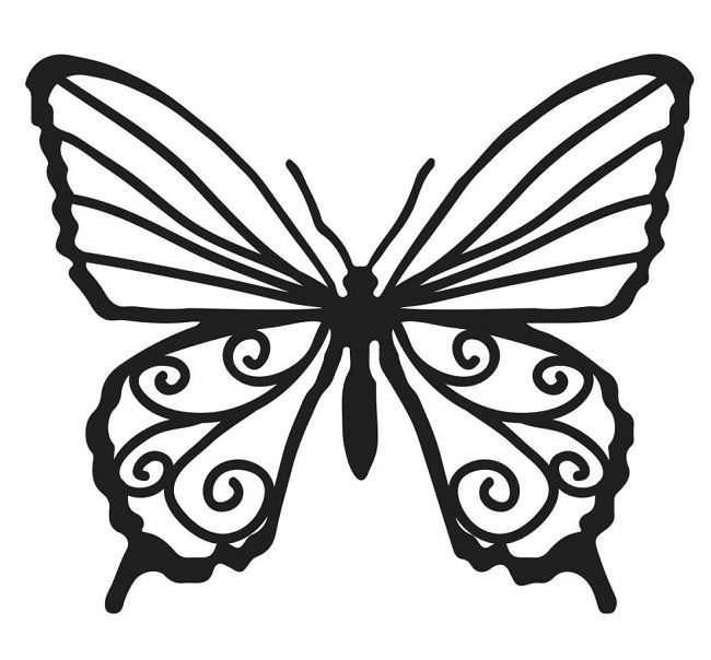 Butterfly TemplateStencil For Chocolate Decorations  Cupcakes